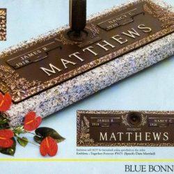 Matthews_Blue_Bonnett